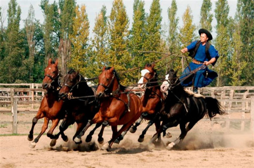 General Steppe Tour